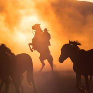 Dramatic image of a cowboy on a horse